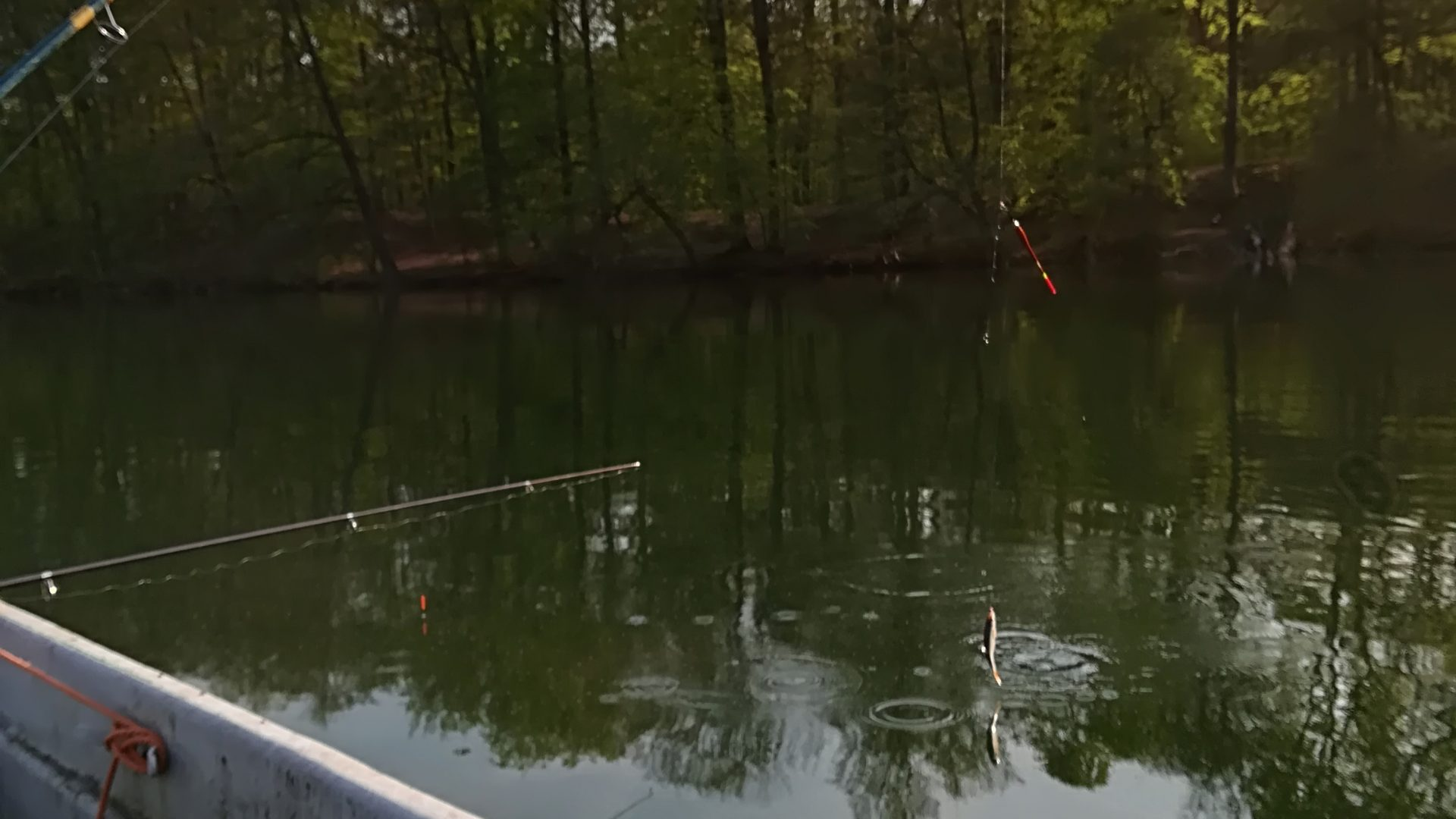 Anglerverein Wandlitz