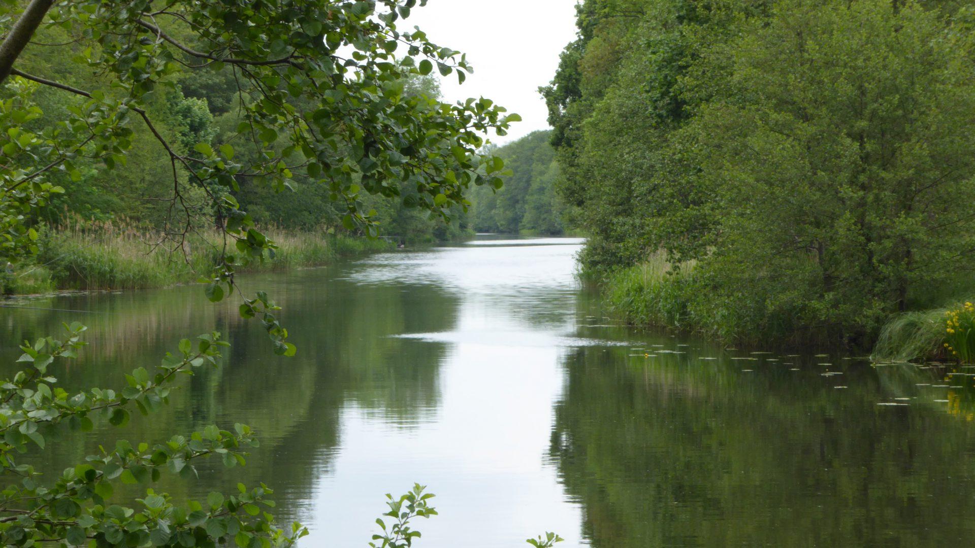 Anglerverein Wandlitz e.V.